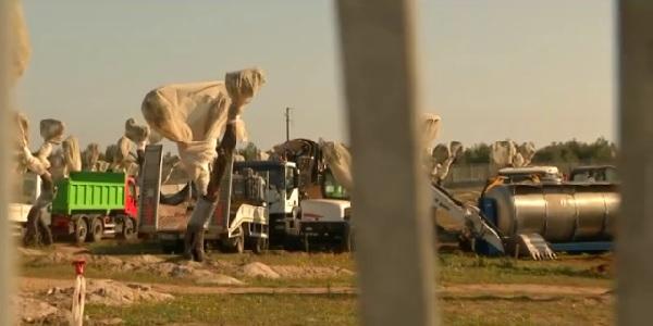 Gasdotto Tap, nuovo stop all'espianto di ulivi |Stamattina i lavori erano ripresi a sorpresa