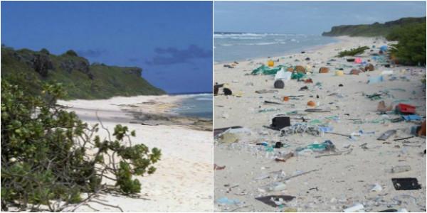 Remota isola Pacifico la più inquinata da rifiuti plastica