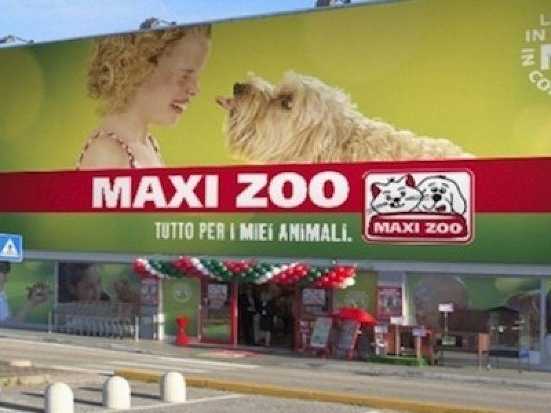 cercalavoro, curriculum maxi zoo, lavorare maxi zoo, lavoro maxi zoo, maxi zoo contratto, trovalavoro