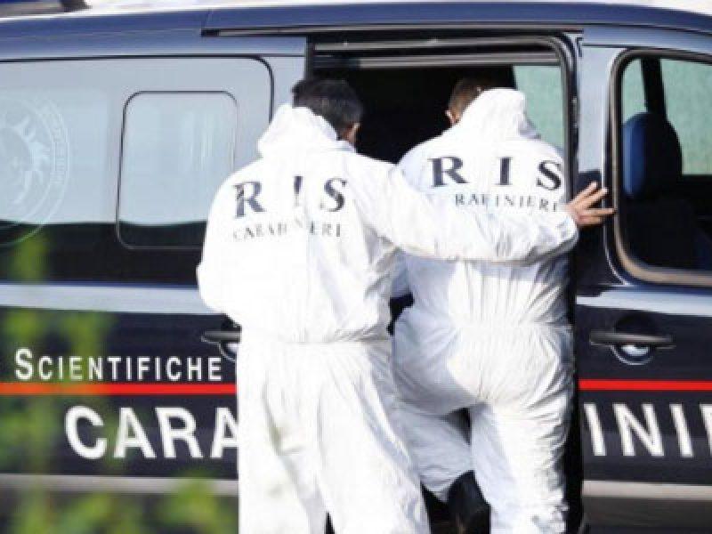 donna uccisa Torino, genero uccide suocera torino, Omicidio Torino, pensionata uccisa a martellate, suocera uccisa torino, Torino