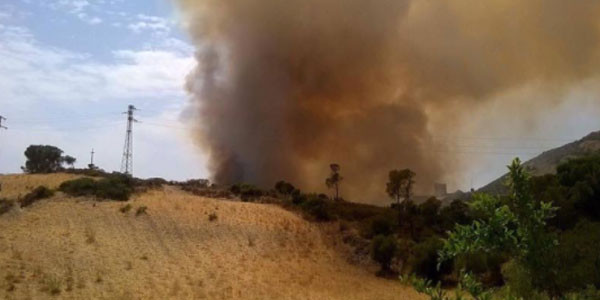 Incendi: codice rosso in Sardegna