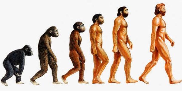 Darwin e l'evoluzionismo vietati nei licei turchi