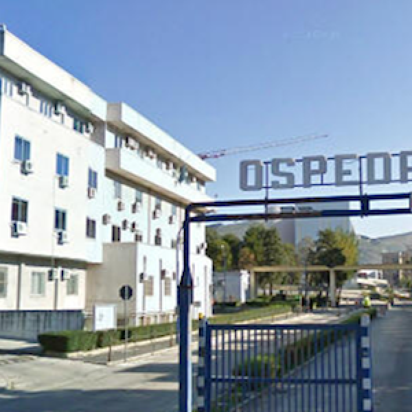 Appalti truccati all'ospedale S.Anna e S.Sebastiano | Arrestati 7 tra dirigenti, funzionari e imprenditori