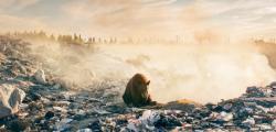 orso rifiuti