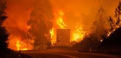 Portogallo incendi