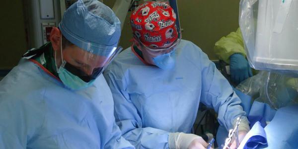 Espianto record: novarese muore e dona gli organi, salvate 9 persone