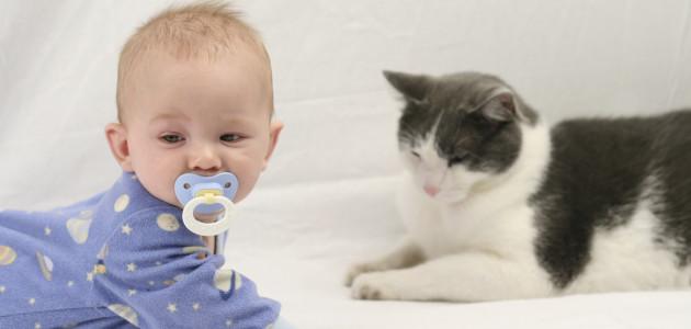 Gatti-e-Neonati-asma
