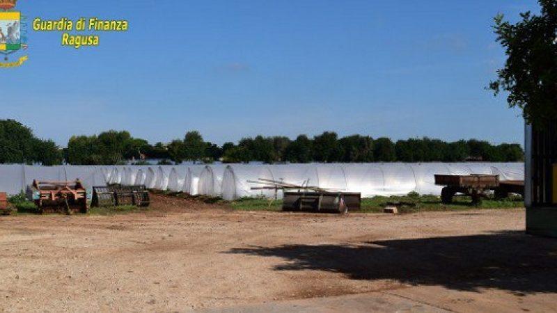 Maxi truffa nel settore dell'agricoltura biologica VD  Frutta spacciata per bio e venduta anche all'estero