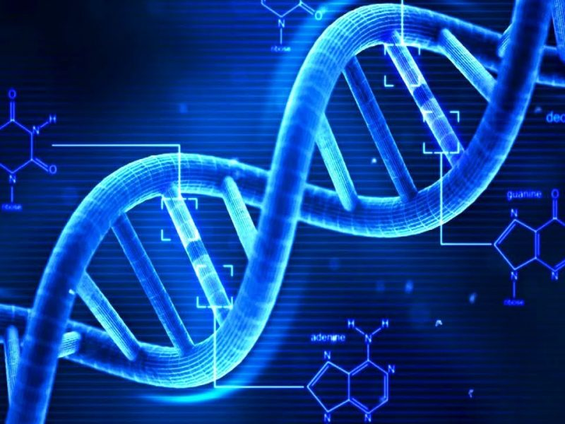 nate le gemelline cinesi resistenti all'hiv
