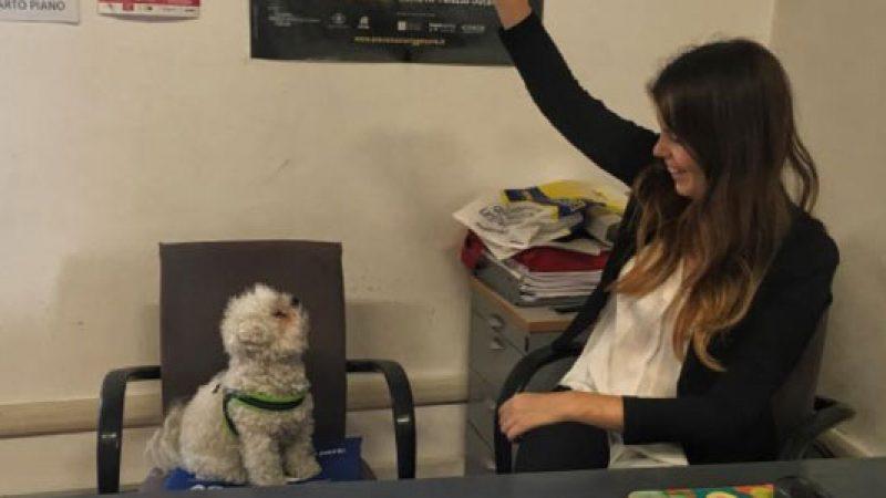 Genova, l'assessore dice sì ai cani in ufficio