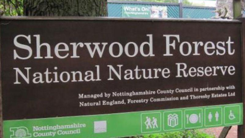 La foresta di Sherwood a rischio a cause dell'estrazione del gas