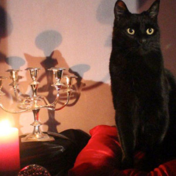 La strega Sabrina torna sul piccolo schermo grazie a Netflix