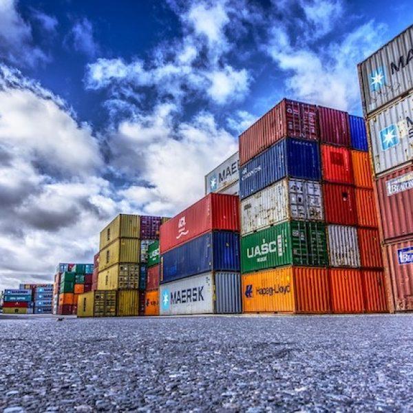 Genova, trovati 300 kg di coca in un container