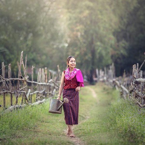 La forza delle donne: in Italia 14 mila under 35 sono imprenditrici agricole
