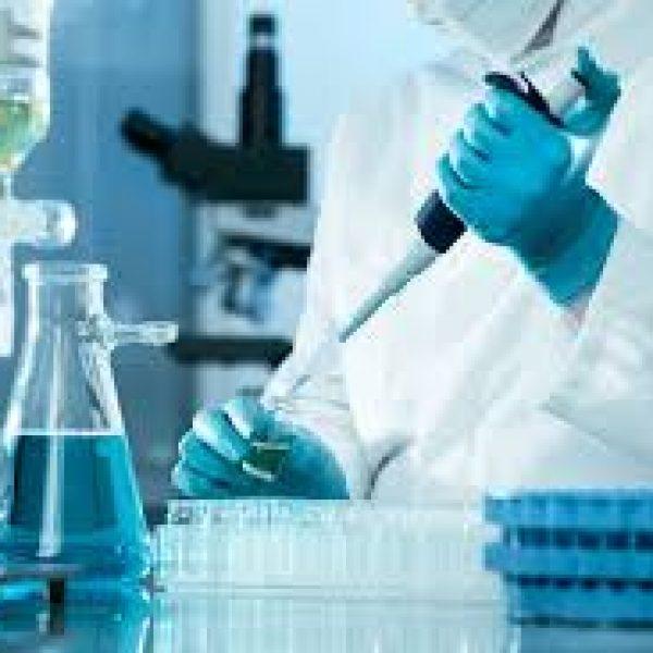 Medicina, anche i polmoni contengono le cellule staminali