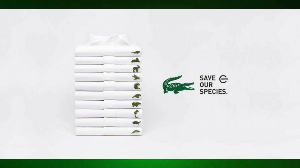 Lacoste cambia logo: ecco l'iniziativa animalista
