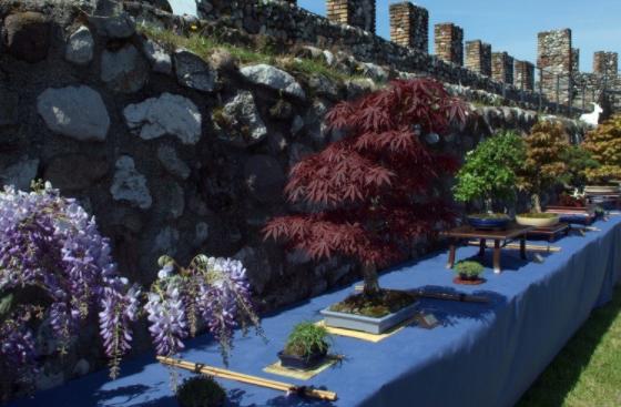 Brescia, al via 'Fiori nella rocca' dal 6 all'8 aprile