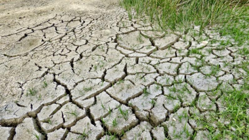 Cambiamenti climatici, promosse le città europee