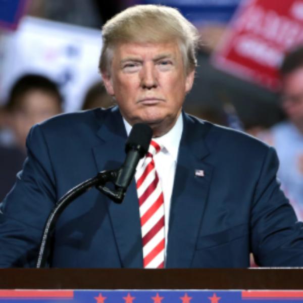 Ex modella Playboy pagata per tacere: c'è un audio di Trump