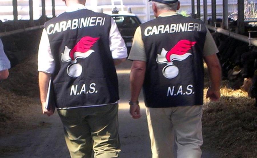 Maxiretata antidoping dei Nas, sequestrati 3,8 milioni di sostanze e 234 arresti