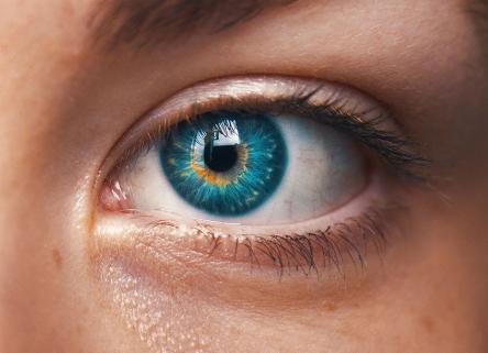 Gb, creata con cellule staminali la prima cornea stampata in 3D