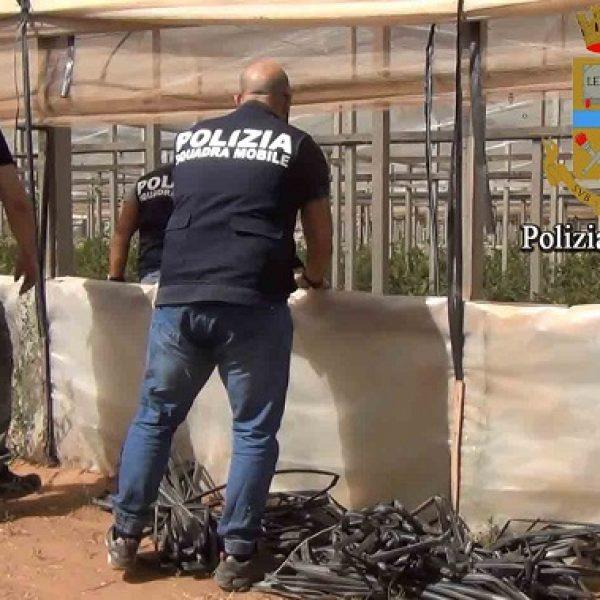 Caporalato nel Trapanese: due arresti