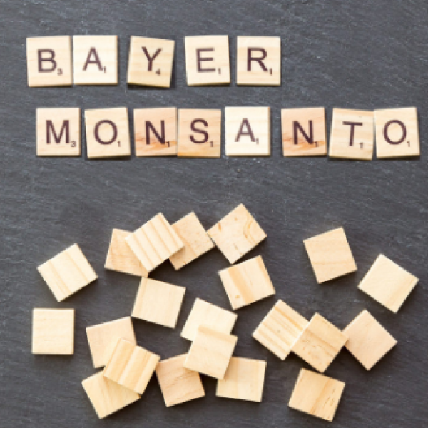 Bayer acquista Monsanto per 63 miliardi di dollari