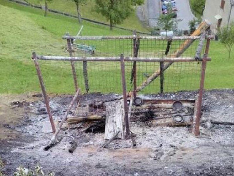 esposto aidaa sui cani bruciati vivi in provincia di sondrio