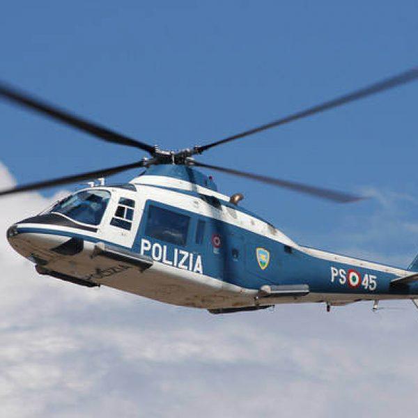 'Ndrangheta, scoperte 3 piantagioni di marijuana da 20 milioni: 18 arresti