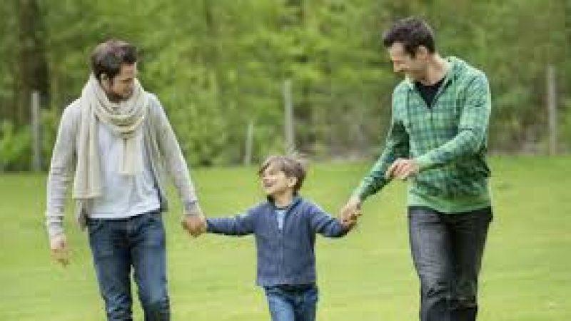 Tribunale di Roma contro i genitori omosessuali
