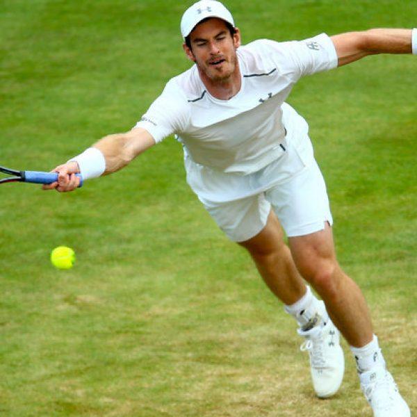 Tennis, che settimana sull'erba! Murray torna al Queen's, Federer ad Halle
