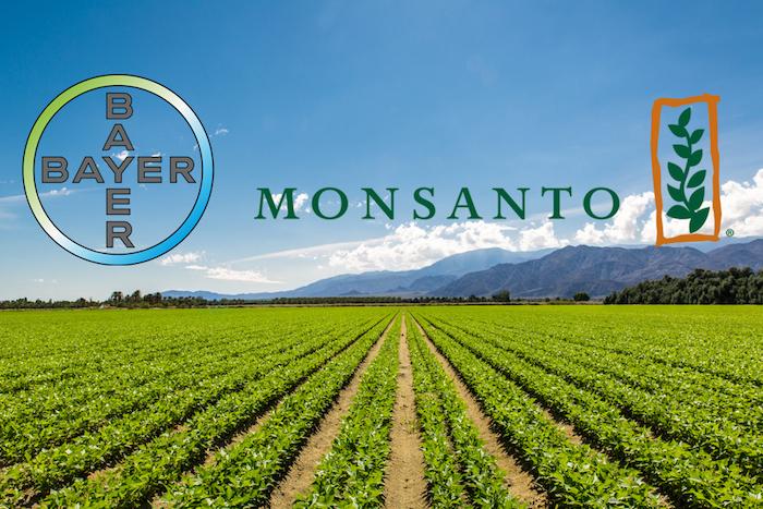 Si ammala di tumore e fa causa alla Monsanto, risarcimento record