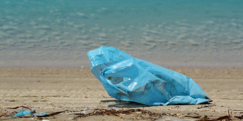 Ambiente, la Nuova Zelanda vieta i sacchetti di plastica