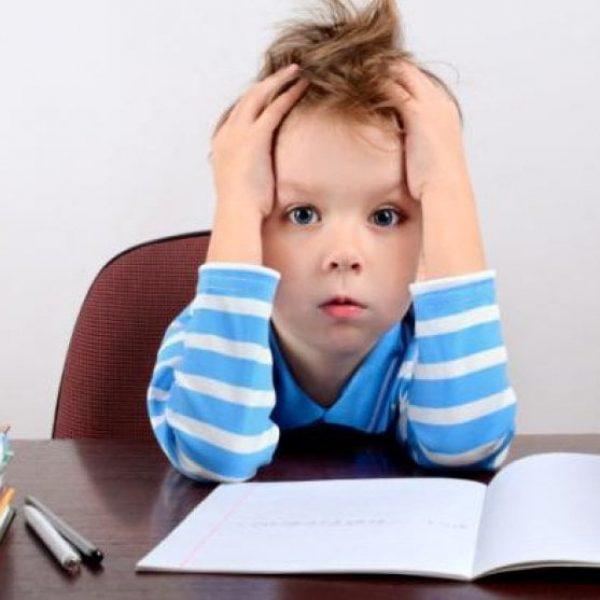 Memoria e apprendimento, i cibi per il ritorno a scuola