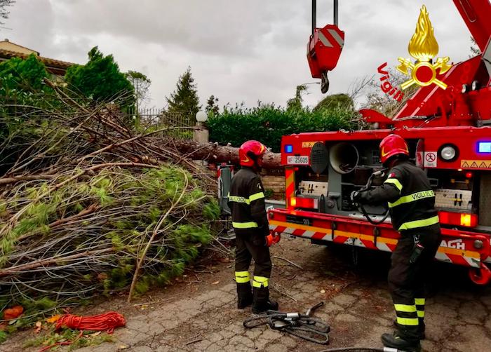 Nubifragi, vento forte e alberi caduti sferzano l'Italia: 8 morti