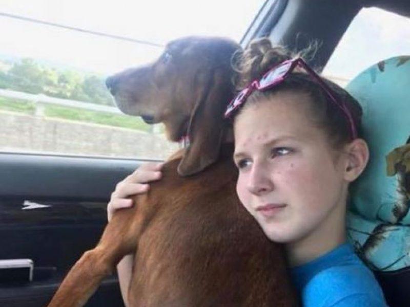 ragazzina muore in virginia per salvare il cane