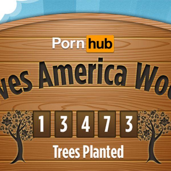 La sfida di Pornhub: per ogni 100 video un albero piantato