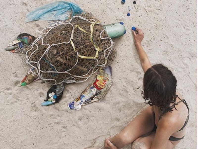 Dominique, #projectlittercritter, i danni al pianeta, inquinamento, opere d'arte dai rifiuti, notizia sì