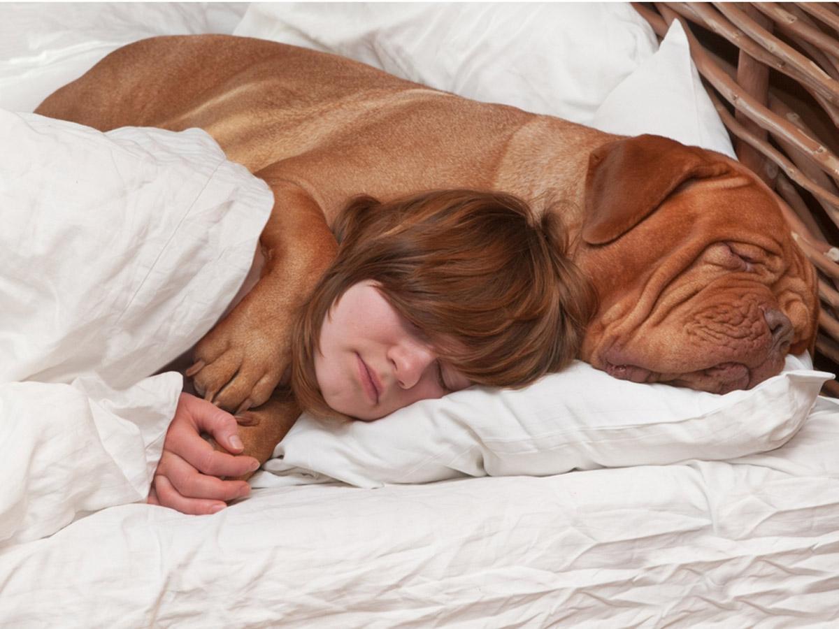 Sonno e relax, le donne a letto preferiscono il cane al partner