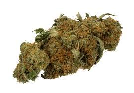 Sla, cannabis per bocca via spray