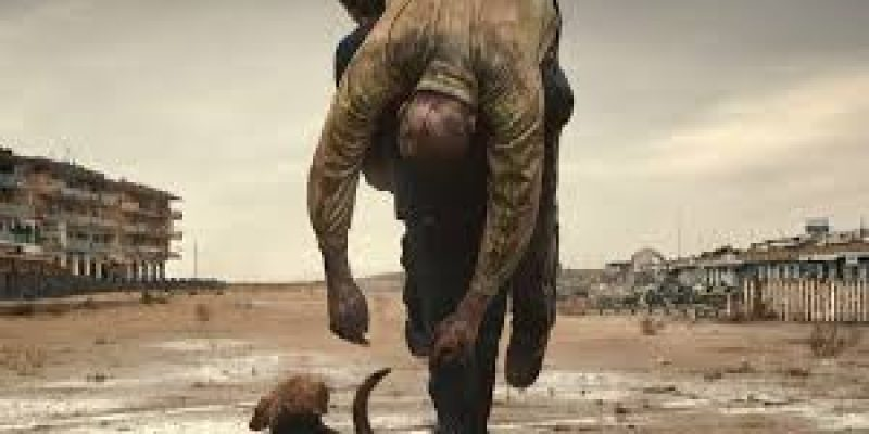 Oscar 2019, Dogman è fuori