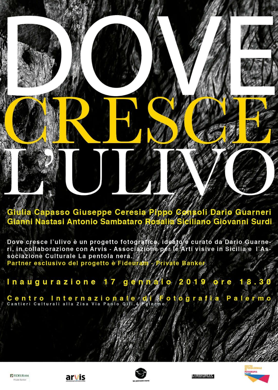 Dove cresce l'ulivo, la mostra di Dario Guarneri al Centro di Letizia Battaglia