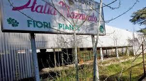Padova, Vittorio Mazzucato morto di stenti insieme al cane