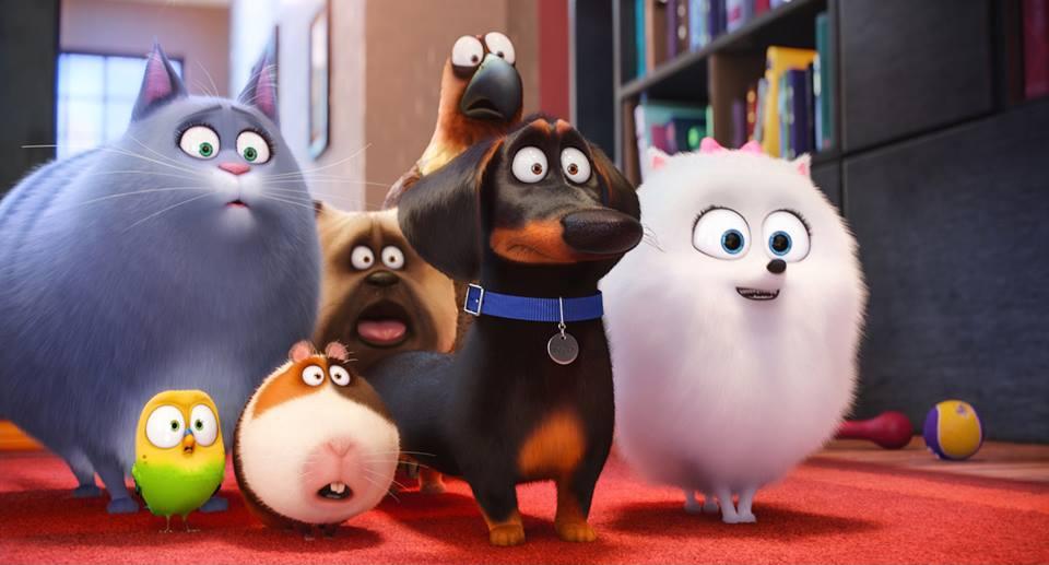 """Pets 2, con il nuovo trailer si impara la """"gattitudine"""""""