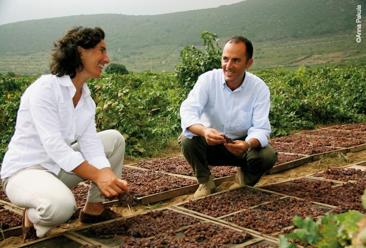 """Al Passito di Pantelleria il premio """"Migliore vino dolce d'Italia"""""""
