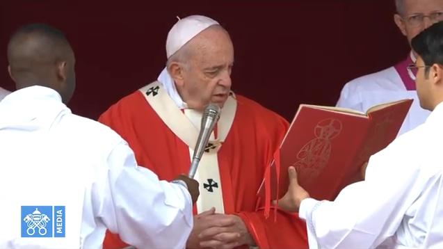 Domenica delle Palme, Papa Francesco benedice gli ulivi a San Pietro