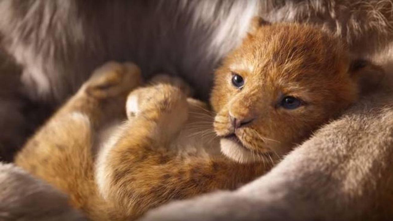 Il Re Leone, il nuovissimo trailer mozzafiato