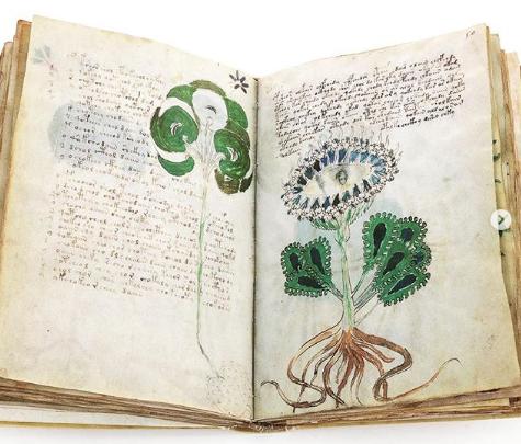 Decifrato il codice Voynich, il libro più misterioso del mondo non ha più segreti