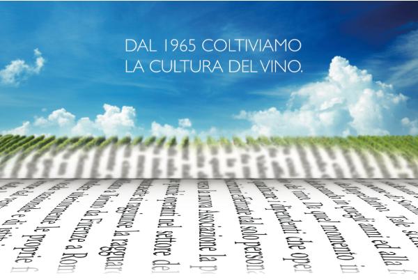 Giornata nazionale del Vino e dell'Olio, si festeggia in tutte le regioni