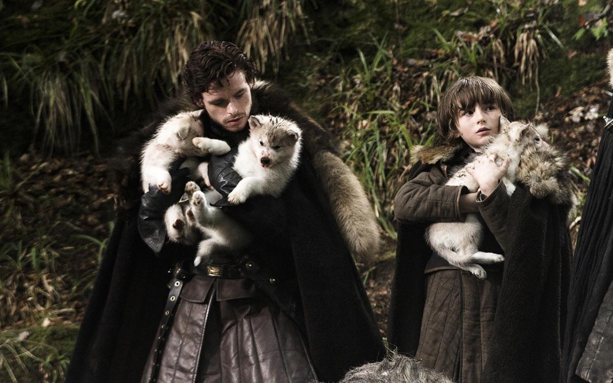 Cani Siberian Husky in pericolo, tutta colpa di Game of Thrones